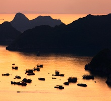 AS81-Cat Ba harbour at sunset, Vietnam